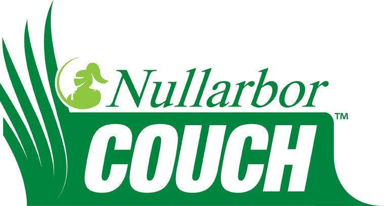 Nullarbor Couch Grass