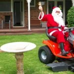 Need a lawn in time for Christmas?